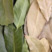 Kitchen Wisdom: Grinding Bay Leaves