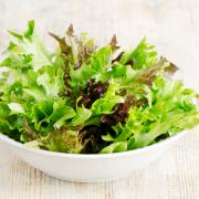 Lettuce salad mix on a wooden table