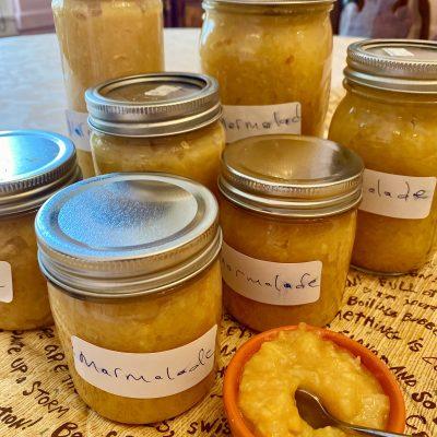 Reduced sugar citrus marmalade